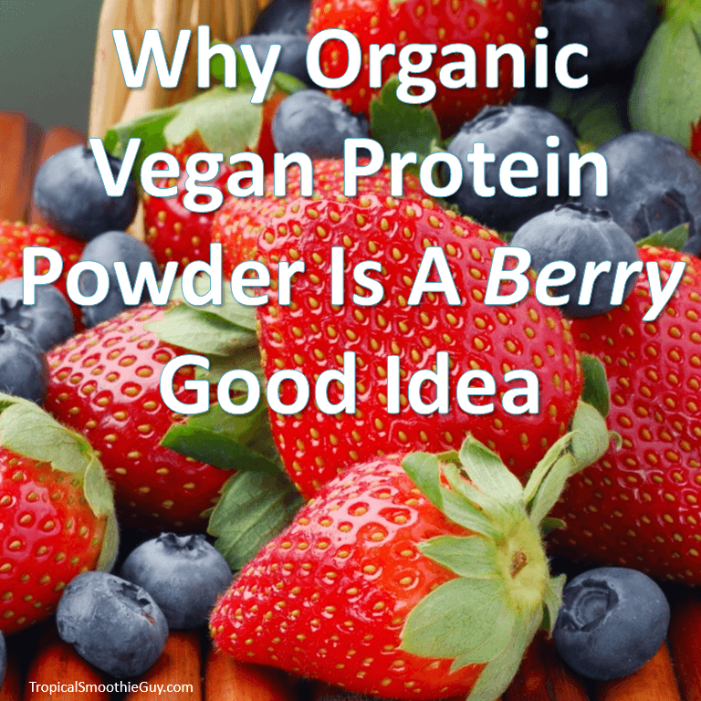 Organic Vegan Protein Powder Featured Image